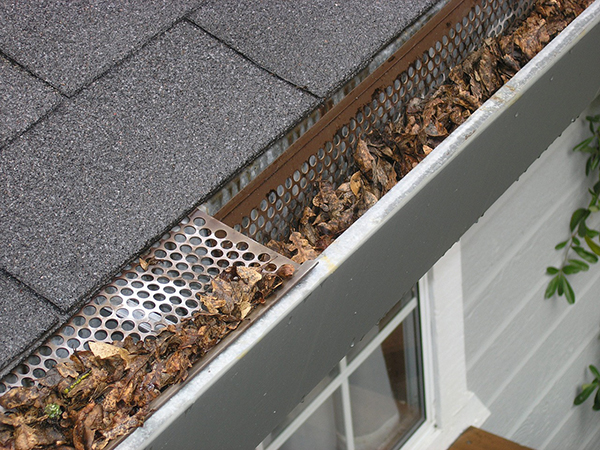 damaged gutters full of dried leaves