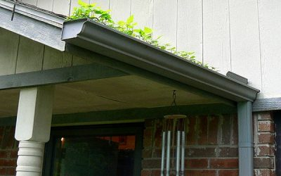 DIY Gutter Cleaning: A Comprehensive Guide for Tulsa OK Homeowners
